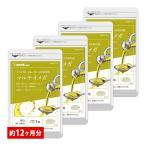 Yahoo!シードコムスPayPayモール店新春セール クーポンで2020円 サプリ サプリメント エゴマ、亜麻仁、クルミなど100%の植物オイルを11種類も配合 マルチオメガ BIGサイズ約1年分
