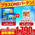 Yahoo!シードコムスYahoo!店サプリ サプリメント DHA EPA オメガ3 αリノレン酸 プラスONEセール DHA+EPA 約5ヵ月分 ケルセチン 約1ヵ月分 ダイエット、健康グッズ