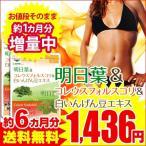 明日葉&コレウスフォルスコリ&白いんげん豆エキス 約6ヵ月分 スーパー増量セール サプリ サプリメント