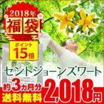 送料無料 ウルトラタイムセール★ セントジョーンズワート 約3ヵ月分【H】