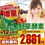 酵素 野草酵素 スーパー増量セール 約14ヵ月分 サプリ ダイエットサプリ 簡単 ダイエット 野菜 野草 EnzymeDiet