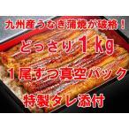九州産 大振り うなぎ蒲焼 1kgセット【国産】【ギフト_お中元_進物】 【送料無料】
