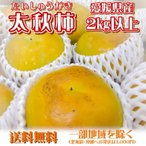 茶箱 愛媛県産 太秋柿 2kg以上