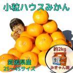 【バラ詰】愛媛県産 小粒ハウスみかん 約2kg【チルド送料無料】