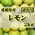 訳あり国産 レモン約2kg 愛媛県産 ワックス・防腐剤不使用 れもん