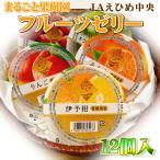 まるごと果樹園フルーツゼリー 12個入/果物 贈り物【送料無料】【ゼリー/ゼリ−】