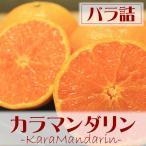 ショッピングみかん バラ詰 ※愛媛県産 カラマンダリン 約5kg