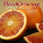 バラ詰 愛媛県産 ブラッドオレンジ 約5kg (タロッコ)