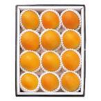 【お歳暮】 佐賀県松浦東部産 温室ネーブルオレンジ 12個 【W】 | 12月10日から順次お届け