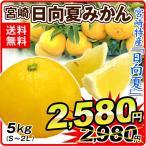 みかん 宮崎産 日向夏みかん(5kg)S〜2L ひゅうがなつ ご家庭用 柑橘 かんきつ フルーツ 国華園