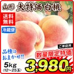 桃 大特価 山形の桃・白桃(約5kg)12〜25玉 冷蔵 ご家庭用 品種おまかせ もも ピーチ フルーツ 国華園