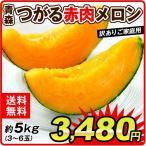 メロン 青森産 つがる赤肉メロン(約5kg)3〜6玉 赤肉 めろん melon フルーツ 国華園