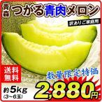 メロン 青森産 つがる青肉メロン(約5kg)3〜6玉 青肉 めろん melon フルーツ 国華園
