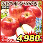 りんご 青森産 ご家庭用 サンつがる(20kg)50〜90玉 早生品種 林檎 果物 フルーツ 国華園