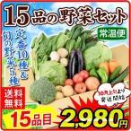 国産 15品目の野菜セット 固定の10品目 + おまかせ5品目 合計15品目  厳選 SET 詰合せ クール便