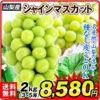 食品 山梨産 シャインマスカット 約2kg 1組 ぶどう 国華園