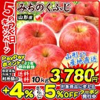 りんご 山形産 みちのくふじ 10kg  国華園 りんご リンゴ サンふじ