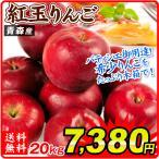 りんご 青森産 紅玉 木箱 約20kg 1箱 送料無料 食品 国華園