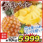 台湾産 パイナップル 10kg 6〜8玉 送料無料  国華園 パイン 金鑚 金鑚鳳梨 【4月下旬〜発送】