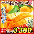 マンゴー インド産 極楽マンゴー 1kg 1箱 食品 フルーツ 送料無料