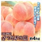 桃 和歌山産 かつらぎの桃 約4kg 送料無料 もも 品種おまかせ