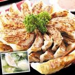 食品 餃子3種セット 1組 冷凍便 国華園