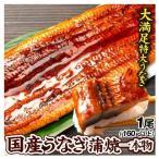seikaokoku_s-fk2312