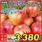 りんご  青森産 大特価 ご家庭用 サンふじ 10kg 1箱 【数量限定】 国華園