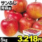 りんご 青森産 サンふじ 5kg 1組