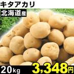 じゃがいも 北海道産 キタアカリ 20kg 1組
