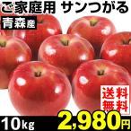 りんご 【超買得】青森産 ご家庭用 サンつがる 10kg1箱 送料無料 リンゴ 早生りんご