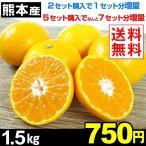 みかん 【超お買得】 熊本県 みかん 1.5kg  送料無料 2セット目から増量あり