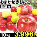 長野産 おまかせ 赤りんご10kg1箱