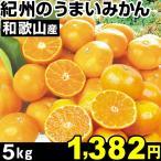 和歌山産 紀州のうまいみかん 5kg