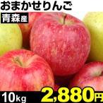 りんご 青森産 おまかせりんご 10kg 1組