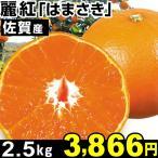 みかん 佐賀産 麗紅「はまさき」 2.5kg 1組 食品