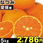 みかん 愛媛産 なつみ 5kg 1組 食品