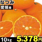 みかん 愛媛産 なつみ 10kg 1組 食品