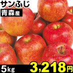 りんご 青森産 サンふじ 林檎 5kg 1箱 食品