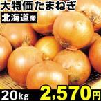 たまねぎ 大特価 北海道産 たまねぎ 20kg 1箱 玉葱 玉ねぎ 食品