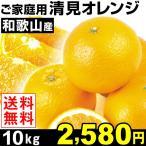 みかん ご家庭用 和歌山産 清見オレンジ 10kg 1箱 送料無料
