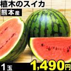 スイカ 熊本産 スイカ 西瓜 1玉 1箱 冷蔵 食品