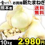 たまねぎ 大特価 熊本産 新たまねぎ 10kg 1箱 玉葱 玉ねぎ 食品