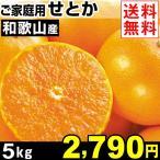 ショッピングみかん みかん 和歌山産 ご家庭用 せとか 5kg 1箱 送料無料