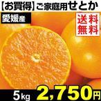 みかん【お買得】 愛媛産 ご家庭用せとか 5kg  1箱 送料無料