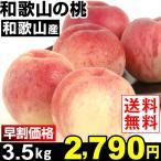 もも  和歌山産 和歌山の桃 3.5kg 送料無料 【早割セール】