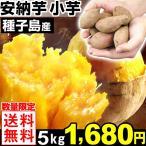 さつまいも 【最終超特価】 種子島産 お買得 安納芋 小芋 5kg 1組 送料無料【数量限定】