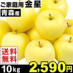 りんご 青森産 ご家庭用 金星 10kg 1箱 送料無料【数量限定】