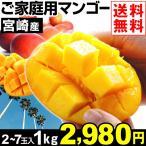 マンゴー 【超買得】宮崎産 ご家庭用マンゴー 約1kg 1組 送料無料 S〜4Lサイズ アップルマンゴー