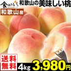 水果 - 桃 和歌山産 和歌山の美味しい桃 4kg 1箱 送料無料 ご家庭用 おいしいもも